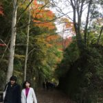 11/25/2018 Red & Purple Abandoned Railway Trek