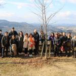 01/13/2019 Easy stroll on Mount Satsuki
