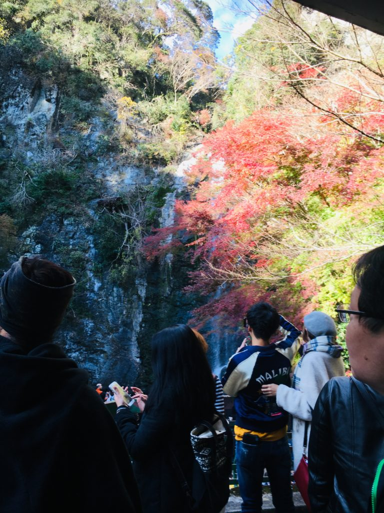 11/24/2018 MINOH WATERFALLS WALK NEW OFF MAIN PATH COURSE