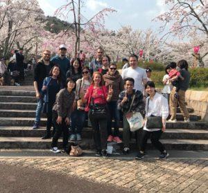 04/01/2018 Cherry Blossom Riverside Walk