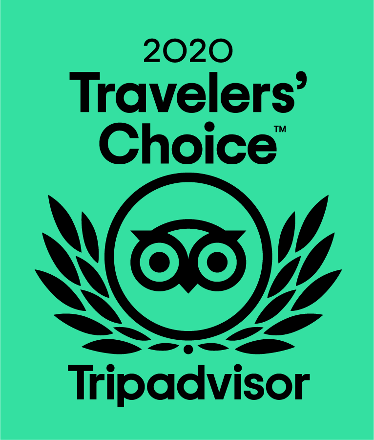We received 3rd best tour in the whole of Japan 2019/2020!